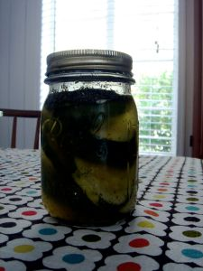 my refrigerator pickles