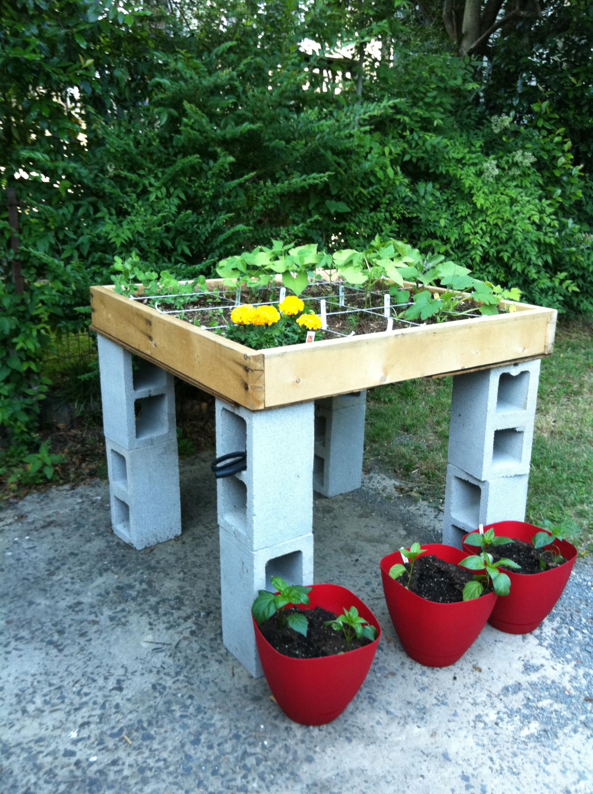 Little garden house - This Year