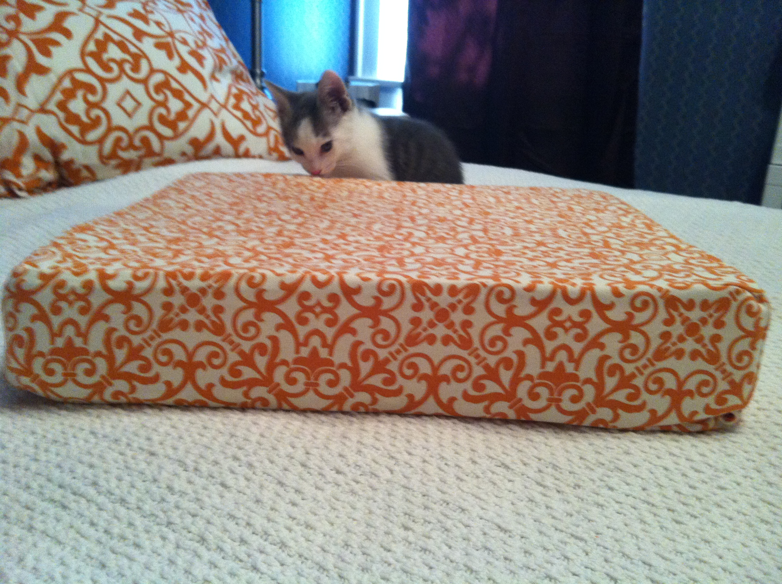 301 moved permanently for Homemade cat bed