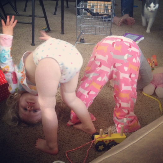 A little downward dog courtesy of Etta and Claire.